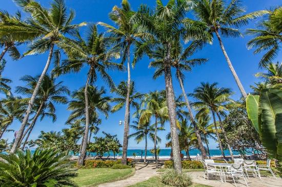 Cabarete Palm Beach Condos Our Backyard