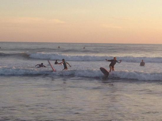 surf lessons at nalu