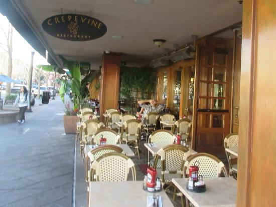 Patio Seating Crepe Vine Mountain View Ca Picture Of