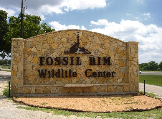 Guided Tour Fossil Rim