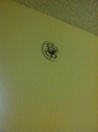 Winter Haven Gardens Inn & Banquet Center: No smoke detector (forget about carbon monoxide!!)