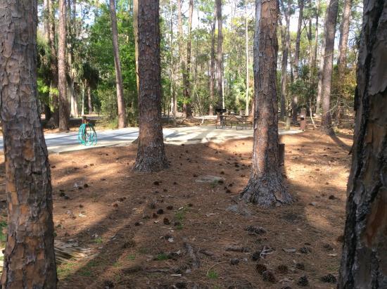 Loop 1600 Fort Wilderness Campground
