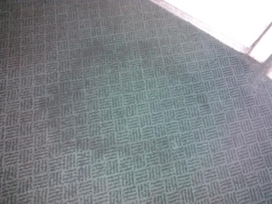 Baymont Inn & Suites Houston Intercontinental Airport: carpet stains