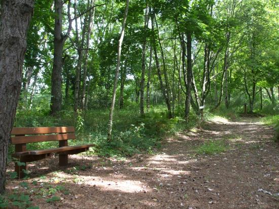 Arboretum Paul Barge