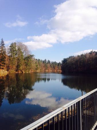 Bärensee: Neuer See