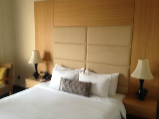 The Umrao: Room