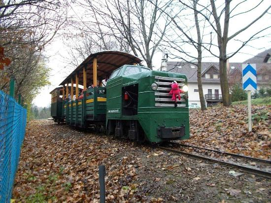 Kemence, Венгрия: A train in autumn