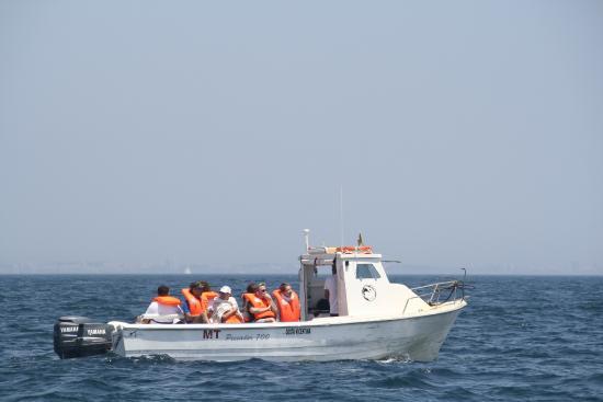 SeaXplorer Sagres