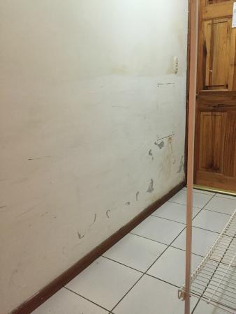 Hotel Tree House: run down room