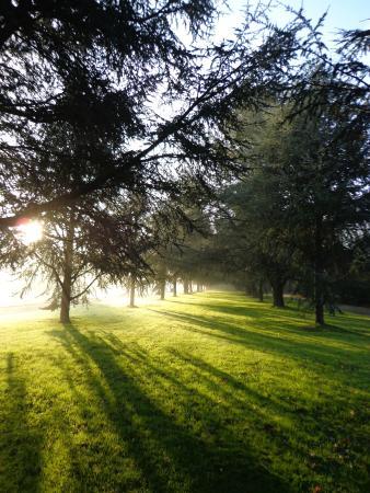 Arboretum Cimetiere Parc