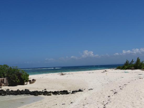 Ile Plate Beach: plage ile plate