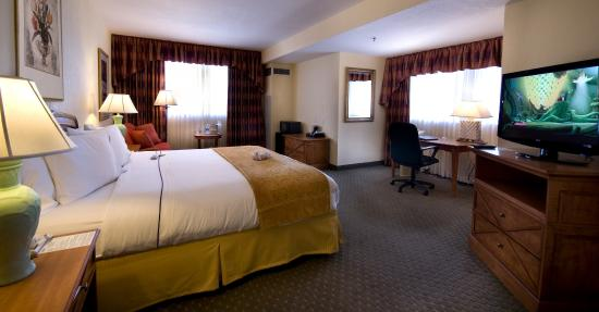 Allure Resort International Drive Orlando: Deluxe Room