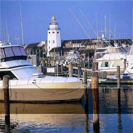 Montauk Yacht Club Resort & Marina: Yacht & Mega Yacht Marina