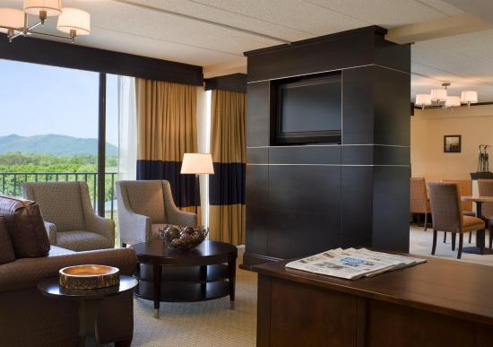 Sheraton Roanoke Hotel and Conference Center: Club Lounge