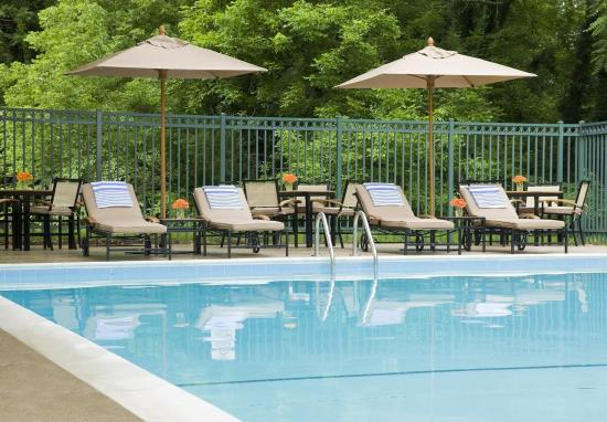 Sheraton Columbia Town Center Hotel: Pool
