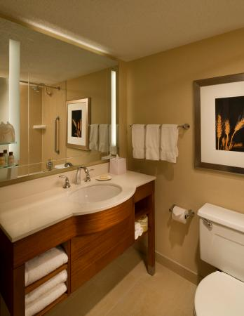 Sheraton Iowa City Hotel: Guest Room Bathroom