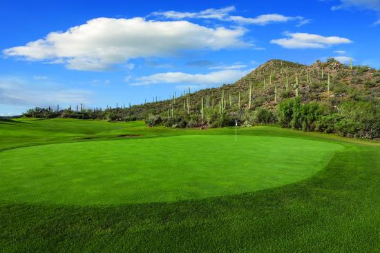 Starr Pass Golf Suites: Golf Course