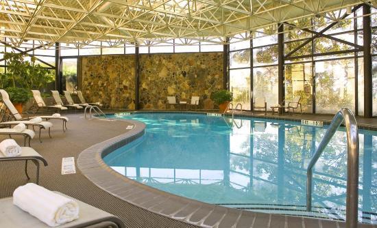 The Westin Atlanta Airport: Pool View