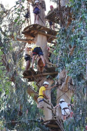 Parque Acuatico Aviva: Canopy Naufragio Pirata