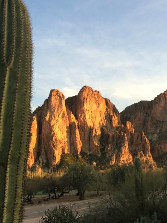 Saguaro Lake Guest Ranch: How is this for a nice view??
