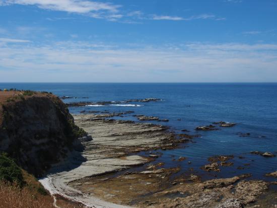 Kaikoura Peninsula Walkway: View from the top of the cliff, Kaikoura Peninsula