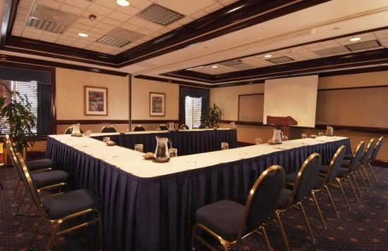 Hampton Inn Dulles-Cascades: Meeting Room
