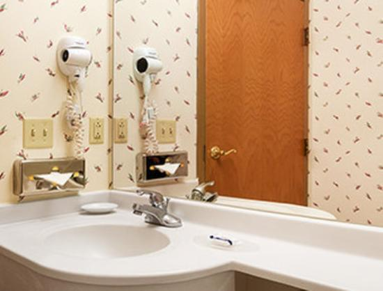 Microtel Inn & Suites by Wyndham Ann Arbor: Bathroom