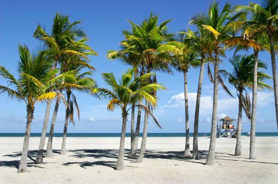 Miami Dadeland Hotel: Miami Beach