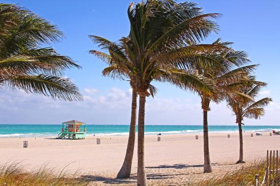 Miami Dadeland Hotel: Hotel Indigo Miami Dadeland - Miami Beach