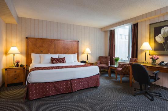 Lord Elgin: Guest Room