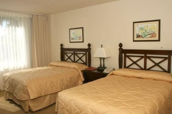 Mayaguez Resort & Casino: Room