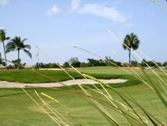 Shula's Hotel & Golf Club: Golf