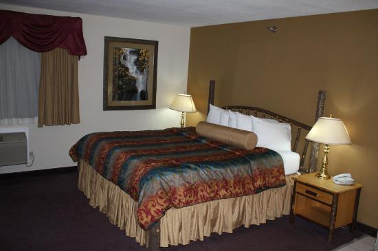 Cannon Falls, MN: Guest Room