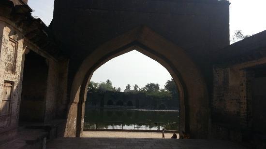 Taj Bawdi