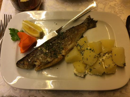 Hotel Kristal: Trout option for dinner one night