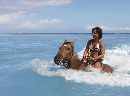 Chukka Caribbean Adventures: Horseback Ride and Swim at CHUKKA