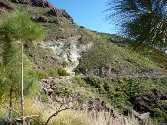 Puerto de la aldea picture of anden verde la aldea de for Fuente de los azulejos