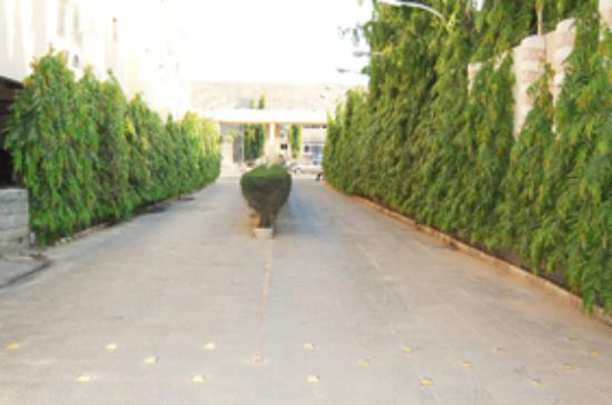 Tahir Guest Palace: Hotel Entrance. Secure