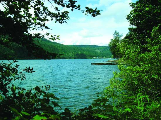Camp views picture of cultus lake rv resort lindell for Cabins at cultus lake