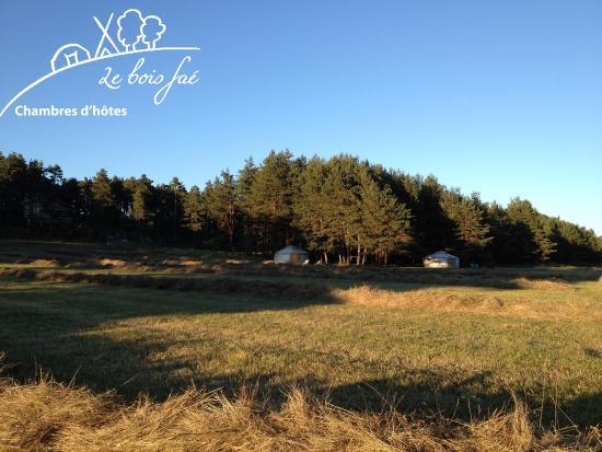 Le Bois Fae: vue sur le jardin du bois faé