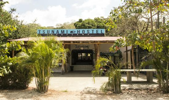 ‪Tsunami Surf Hostel‬