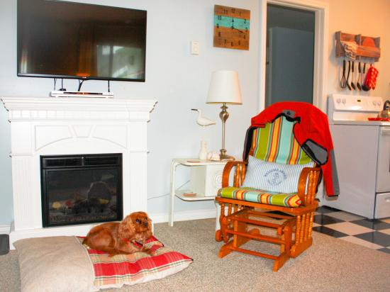 Millstone Manor Bed, Breakfast & Vacation Rental: Yoshi enjoying the fireplace