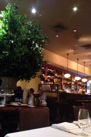 Babbo Restaurant New York Tripadvisor