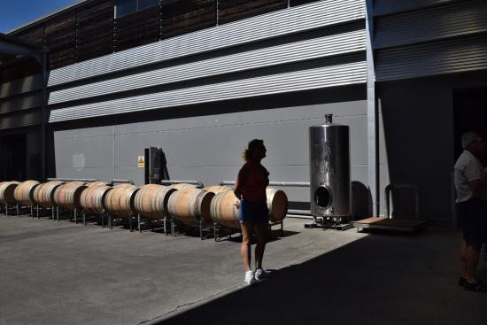 Spy Valley Wines: Part of the tour - outside empty barrels waiting to be filled