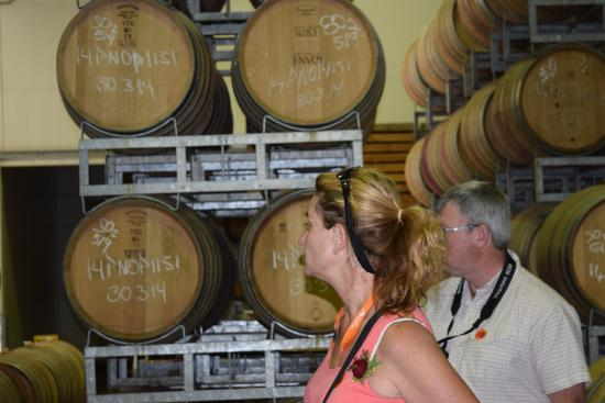 "Spy Valley Wines: Part of the tour inside the ""Cool Room"""