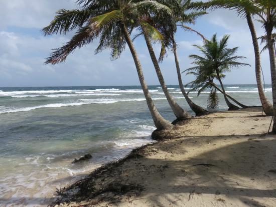 Xplora Panama Day Tours: Dog Island - San Blas