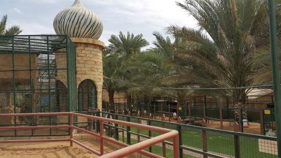 Emirates Park Resort: Zoo