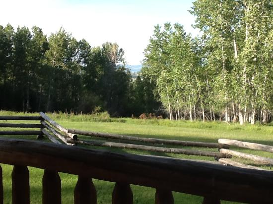 Deer Crossing Bed and Breakfast: view from cabin porch - so peaceful!