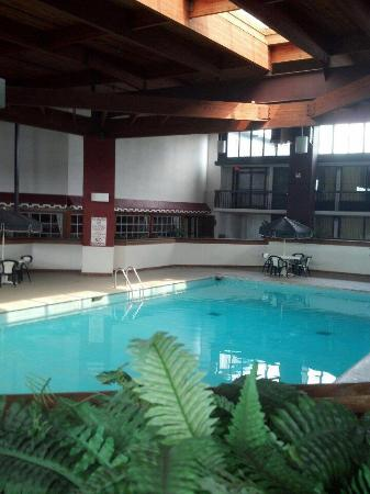 Jasper Inn Dome & Convention Centre : Indoor Pool