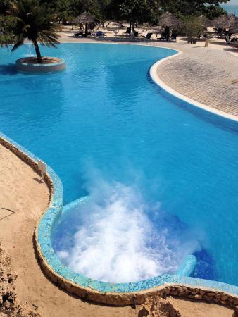 Pool Arae